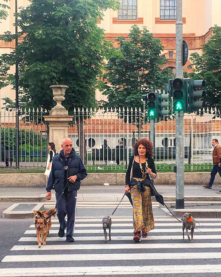 milan dog friendly