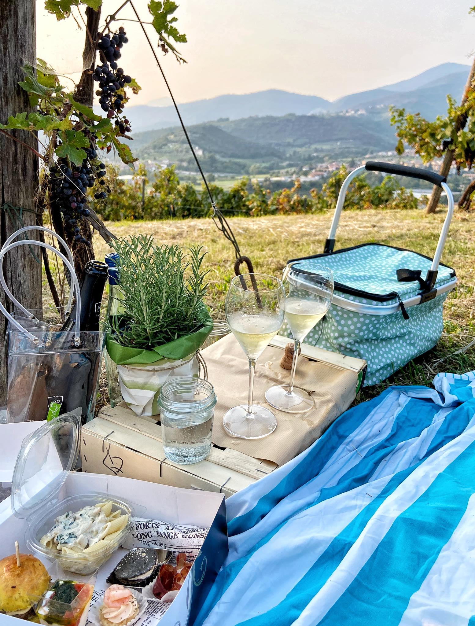 franciacorta piknik slow wine